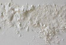 Tacoma drywall mold removal